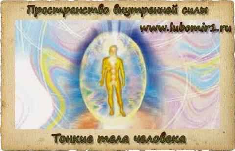 Тонкие тела человека (их строение, назначение и ощущение)