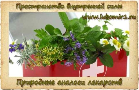 Природные аналоги лекарств