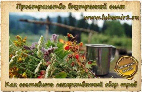Как составить лекарственный сбор трав