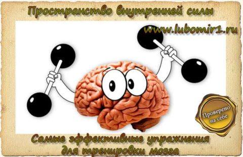 Самые эффективные упражнения для тренировки мозга