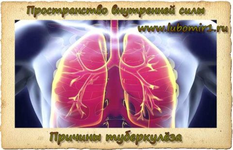 Причины туберкулёза