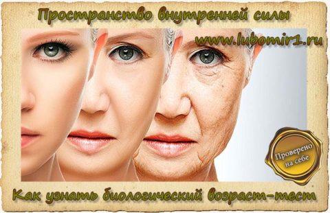 Как узнать биологический возраст-тест